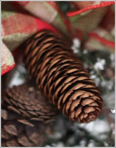 christmas-decor-grapevine-and-pine-christmas-decorations-seasonal-holiday-decor (2)